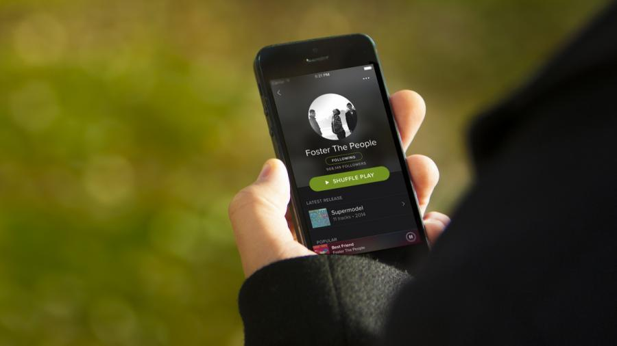 Spotify Gift Card 30 EUR [DE] Screenshot 5