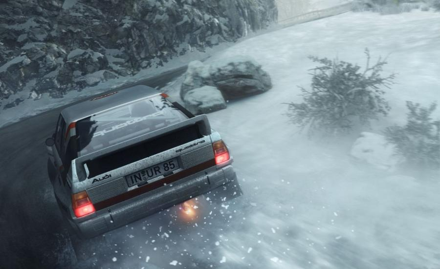 DiRT Rally Screenshot 7